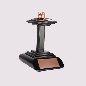 National Business Excellence Awards - Overall Winner Bronze Award