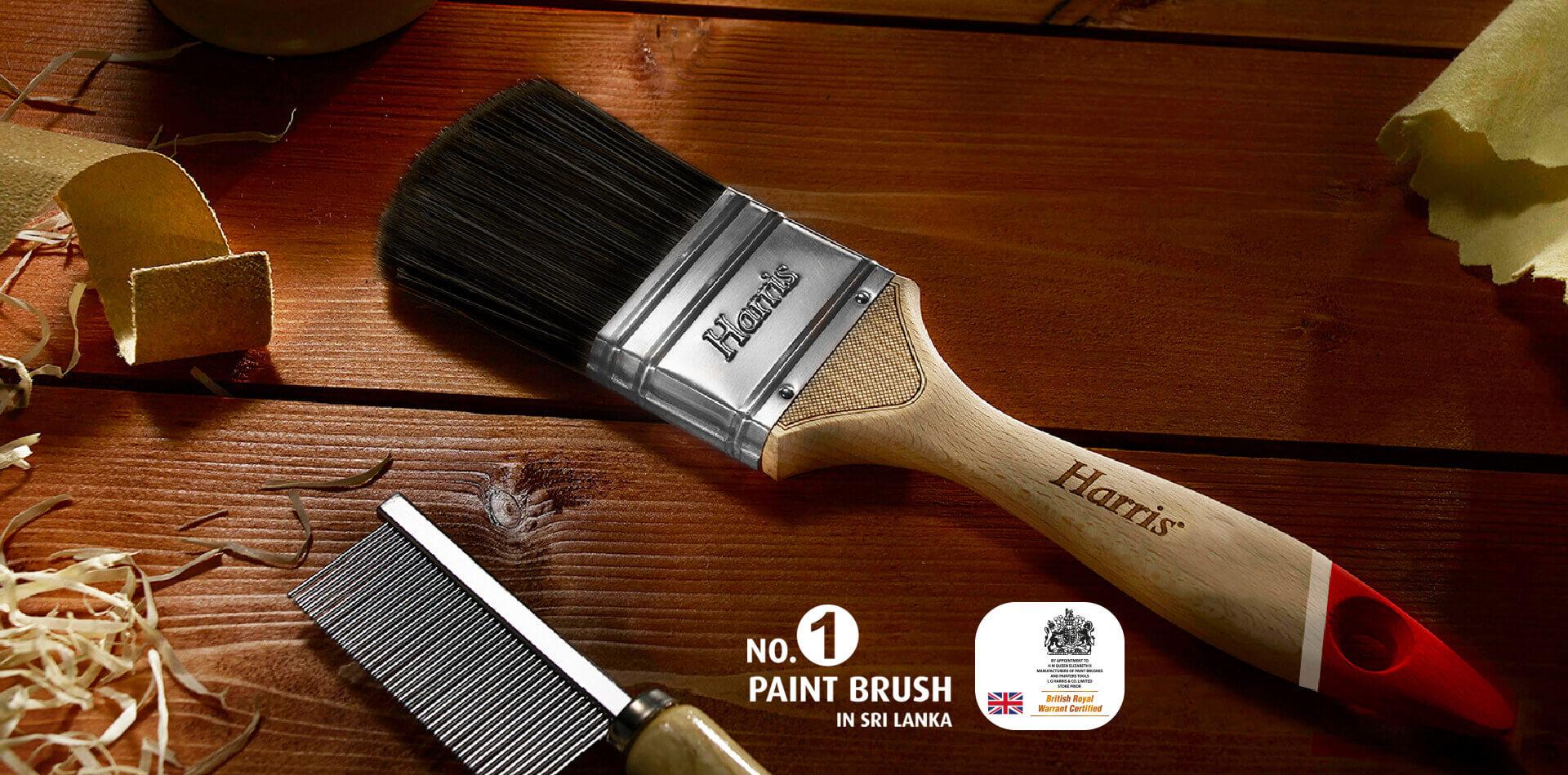 Harris quality paint brush number 1 paint brush in sri lanka